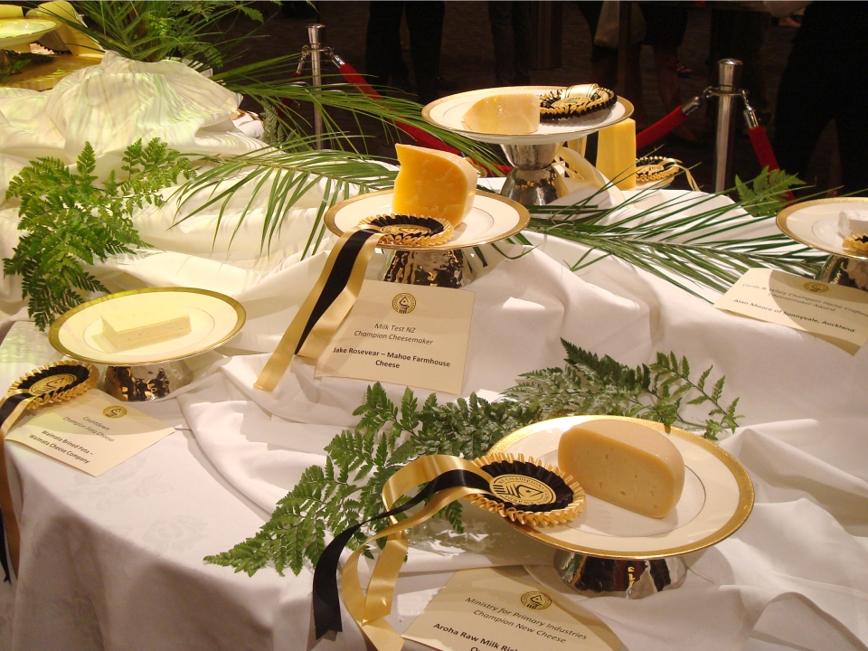 New Zealand Champions of Cheese winners 2013